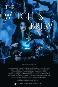The Witches' Brew cover